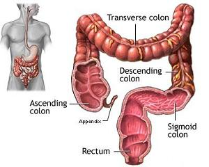Homemade Colon Cleanse Recipe To Help